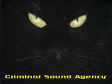 Criminal Sound Agency