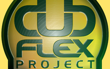 Mike Chatta / Dub flex Project