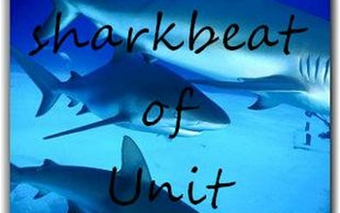 Sharkbeat of Unit